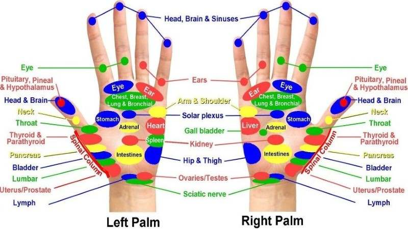 Acupressure Points Chart – Acupressure Points for Self