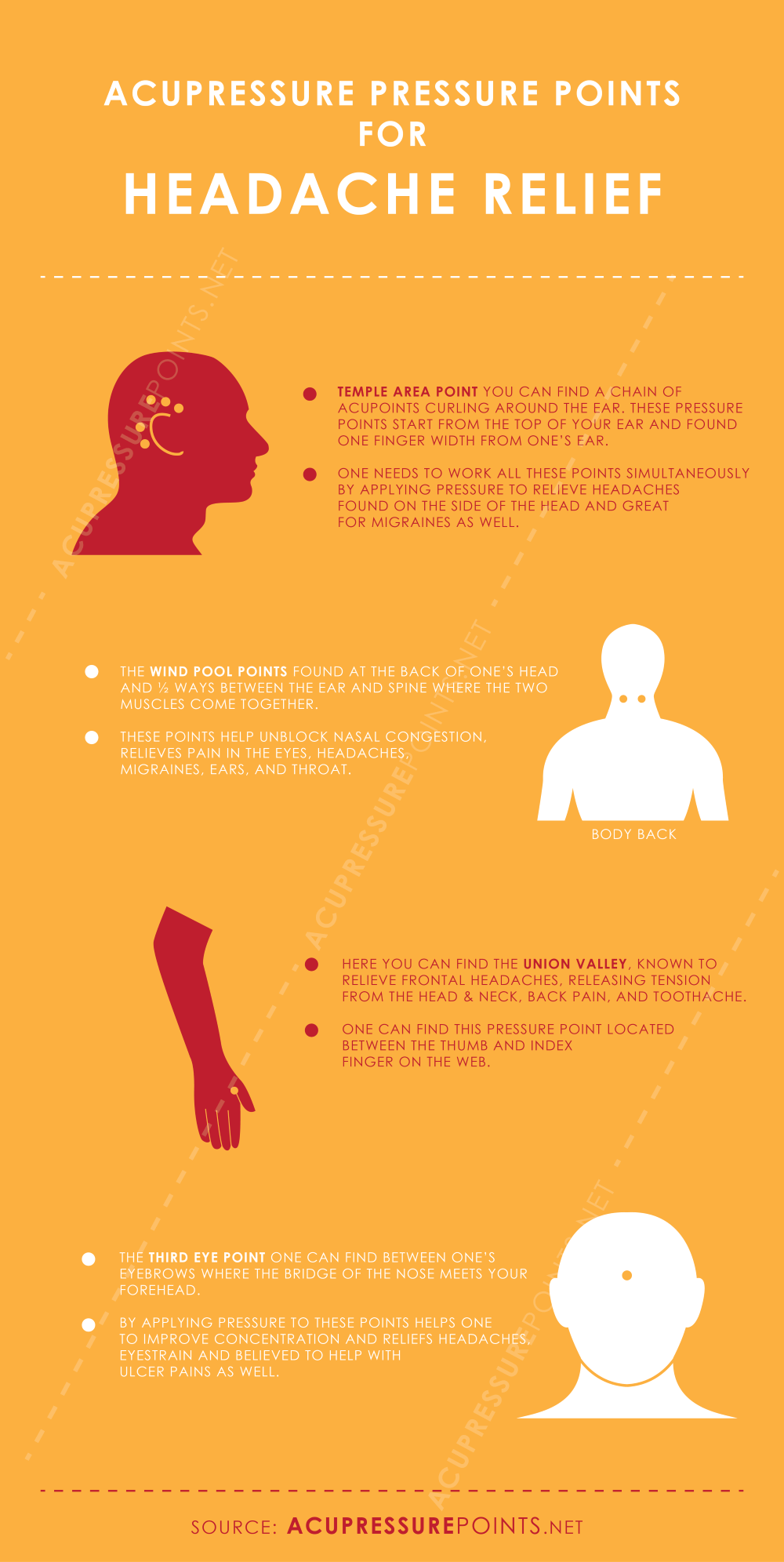 Acupressure Points for Headache & Migraine Relief Infographic