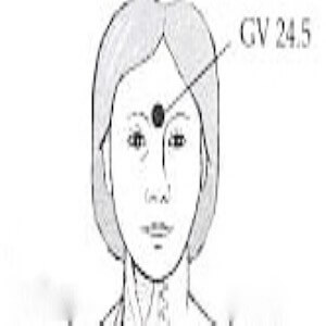 Governing Vessel 24.5